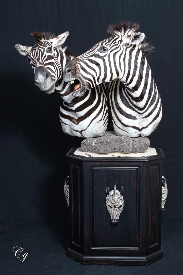 Zebra Mount with special base.